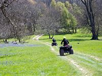 Three Hour Quad Bike Thrill in Kent